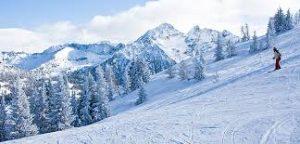 ski-min
